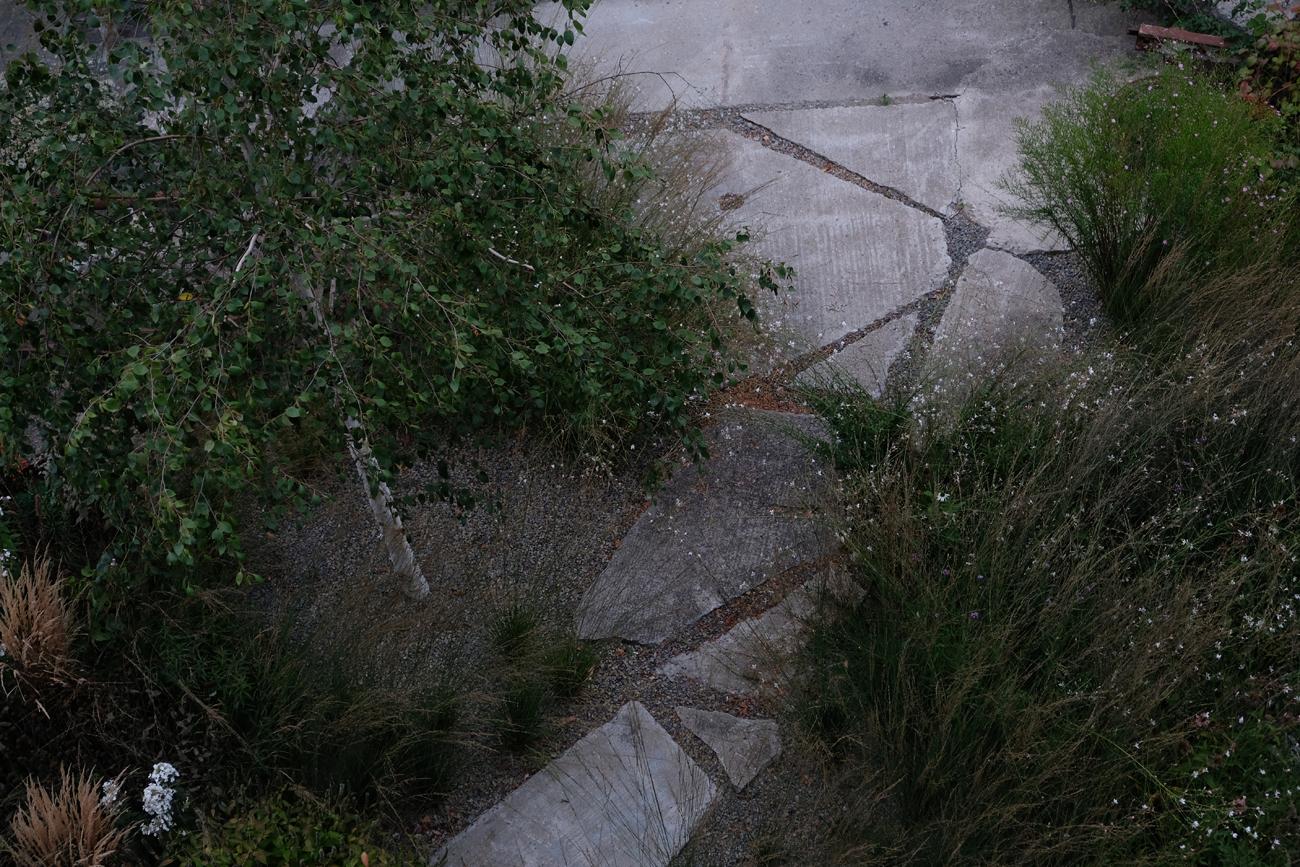 ruinengarten-10-tanja-lincke-architekten