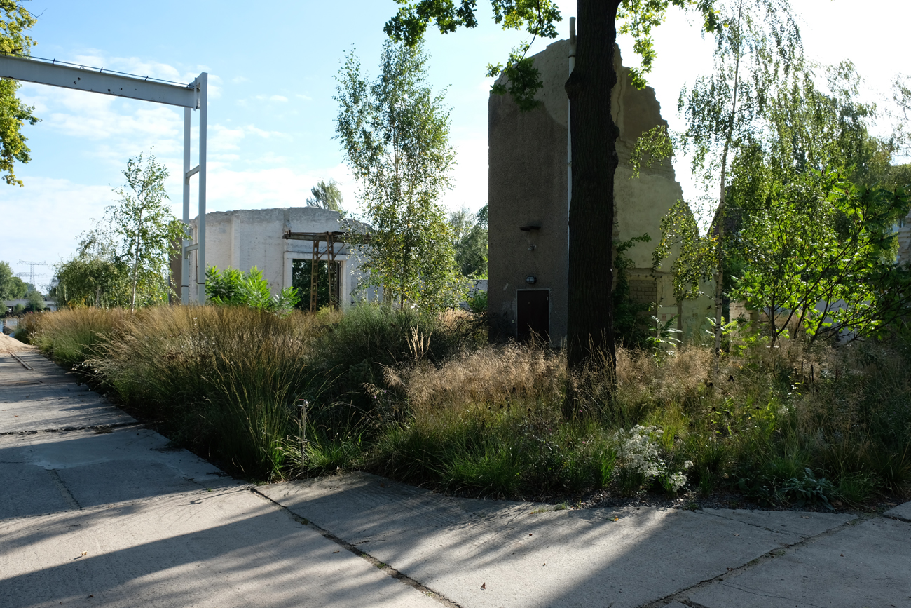ruinengarten-9-tanja-lincke-architekten